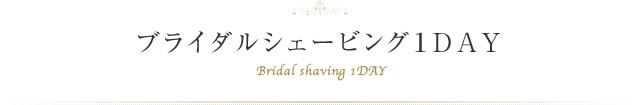 ブライダルシェービング1DAY Bridal shaving 1DAY