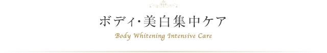 ボディ・美白集中ケア Body Whitening Intensive Care